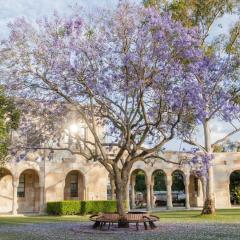 Blooming Jacaranda tree in front of sandstone building at UQ St Lucia.