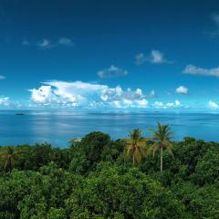Beautiful, clear blue waters spread out across the horizon. The foreground of the image is full of thick, lush forest and palm trees. The sky is clear with some fluffy white clouds.