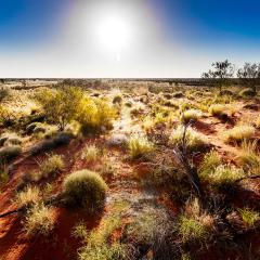 An image of the Australian outback.